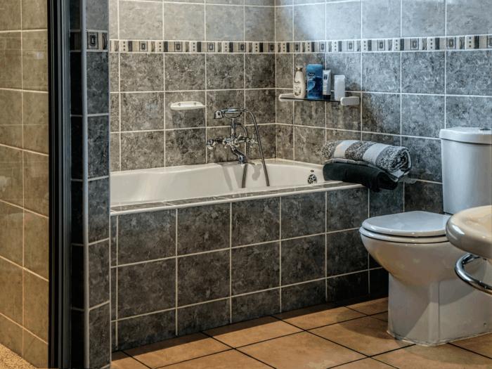 Dual flush vs single flush